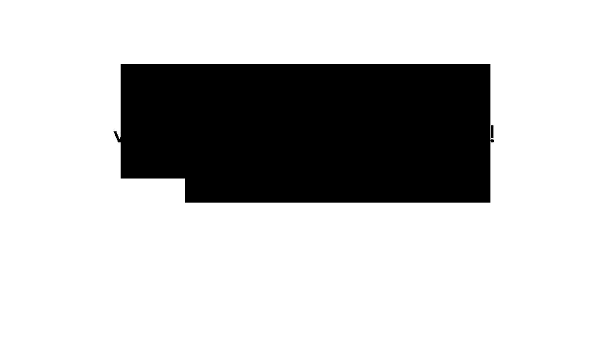 flitsconcerten-slider-sandramellema